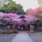 神戸で合格祈願するならとにかくパワーが凄いこの神社だ/3選